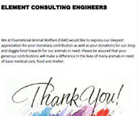 Element Consulting Engineers - Mandela Day